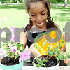 Rob Winner – rwinner@daily-chronicle.com<br /> <br /> Cheyann Rainey, 7, waters a flower pot during Camp Maple Leaf at Hopkins Park in DeKalb, Ill. on Thursday June 17, 2010.