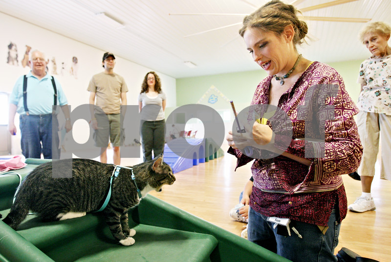 Rob Winner – rwinner@daily-chronicle.com<br /> <br /> Sam Lenser uses a clicker and treats during a cat training demonstration at TAILS Humane Society in DeKalb, Ill. on Saturday August 7, 2010.