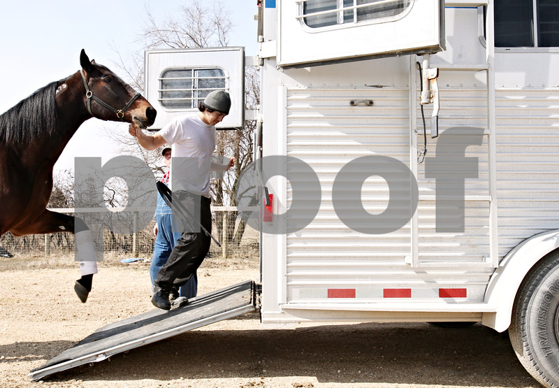 Beck Diefenbach  -  bdiefenbach@daily-chronicle.com<br /> <br /> Vicente Velasco loads a horse into a trailer on the Mack Racing Stable outside Kingston, Ill., on March 19, 2010. The horses were being taken to a race at Maywood Park Race Track.