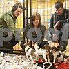 Rob Winner – rwinner@shawmedia.com<br /> <br /> (From left to right) Sycamore residents Mercedes Cauffman, her mother Tracy Cauffman and brother Logan Cauffman look at a litter of Dachshund mixed breed puppies at TAILS Humane Society in DeKalb on Friday. Tracy brought her son Logan to TAILS to find a pet to give as a Christmas gift.