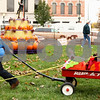 Kyle Bursaw – kbursaw@shawmedia.com<br /> <br /> Nicky Scialabba, 4, pulls a wagon full of decorated pumpkins on the DeKalb County Courthouse lawn to place them for the 2011 Sycamore Pumpkin Festival on Wednesday, Oct. 26, 2011.