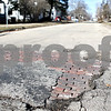 Rob Winner – rwinner@daily-chronicle.com<br /> <br /> Bricks are exposed on Park Avenue near Locust Street in DeKalb, Ill., on Friday, March 11, 2011.