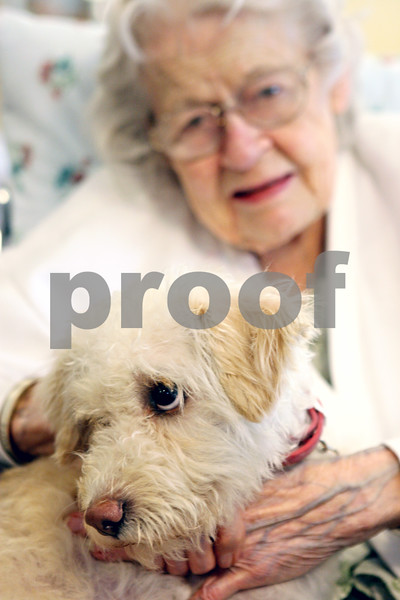 Rob Winner – rwinner@daily-chronicle.com<br /> <br /> Belle, a poodle-terrier mix, sits with Pine Acres resident Rose Lutz on Wednesday afternoon in DeKalb. Belle, who was found in a field and brought to the county animal shelter, has now become the rehab dog for Pine Acres residents.