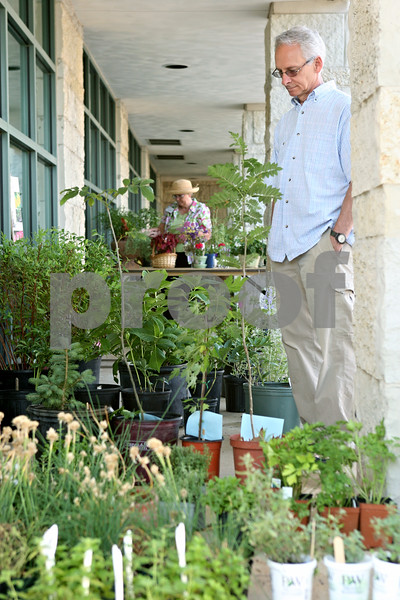 Rob Winner – rwinner@daily-chronicle.com<br /> <br /> Steve Worley, of Sycamore, looks over some shrubs outside the DeKalb County Farm Bureau in Sycamore as the University of Illinois Extension Master Gardeners held their fourth annual plant sale and garden walk on Saturday.