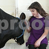 "Rob Winner – rwinner@daily-chronicle.com<br /> <br /> 9-year-old Destiny Fogle, of Leland, spends time with her 4-month-old holstein calf named Keyanna at the Sandwich Fairgrounds on Saturday during the 4-H Livestock Fair. This is Fogle's first year showing and third fair the duo have been to this year. ""She loves me and I love her,"" said Fogle of Keyanna."