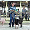 Rob Winner – rwinner@daily-chronicle.com<br /> <br /> Hayden Kuhn of Genoa shows his crossbred gilt during the 4-H Livestock Fair at the Sandwich Fairgrounds on Saturday morning. Kuhn's hog chosen as the 4-H reserve grand champion market gilt.