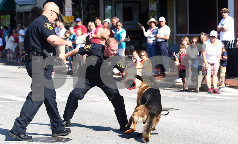 Kyle Bursaw – kbursaw@daily-chronicle.com<br /> <br /> During a demonstration for DeKalb's Memorial Day parade, Deputy Grant Erickson (center) fires a toy pistol and Kane, a canine officer for the Sheriff's office, bites Erickson's protected arm.  Kane's handler Deputy Toby Jennings (left) approaches to get Kane to release.