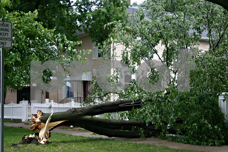 A fallen tree rests on a fence Monday morning outside 204 S. Main St. in Sycamore, following the thunderstorm that moved through the area and left thousands without power.<br /> <br /> Caitlin Mullen - cmullen@daily-chronicle.com