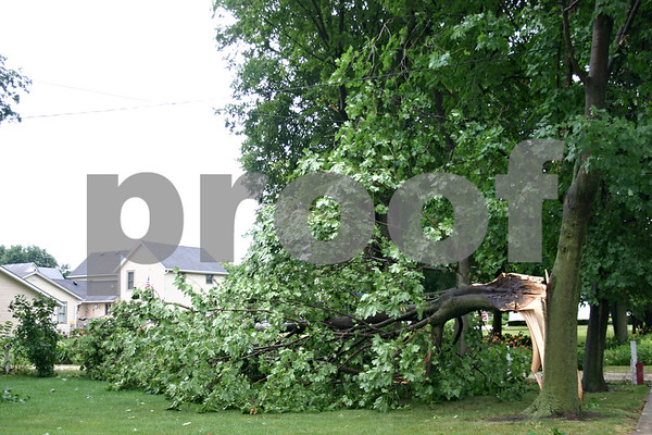 A fallen tree rests Monday morning on Helen Dixson's property on Locust Street in Genoa, following a thunderstorm that left thousands in the area without power.<br /> <br /> Caitlin Mullen - cmullen@daily-chronicle.com