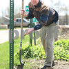 Kyle Bursaw – kbursaw@daily-chronicle.com<br /> <br /> Brian Urban tosses a weed out of his city garden plot while preparing a section of it for planting in DeKalb, Ill. on Saturday, April 30, 2011.