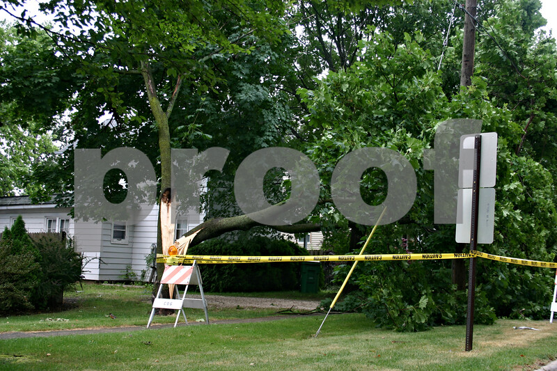 A fallen tree rests on power lines Monday on First Street in Genoa, following a thunderstorm that left thousands without power.<br /> <br /> Caitlin Mullen - cmullen@daily-chronicle.com