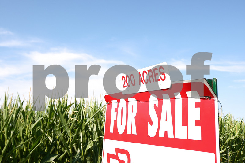 Kyle Bursaw – kbursaw@daily-chronicle.com<br /> <br /> A cornfield for sale on South Malta Road in DeKalb, Ill. on Thursday, July 21, 2011.