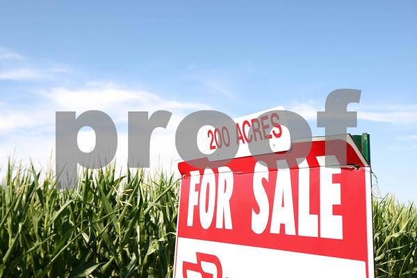 Kyle Bursaw – kbursaw@daily-chronicle.com<br /> <br /> A cornfield for sale on South Malta Road in DeKalb, Ill. on Thursday, July 21, 2011.