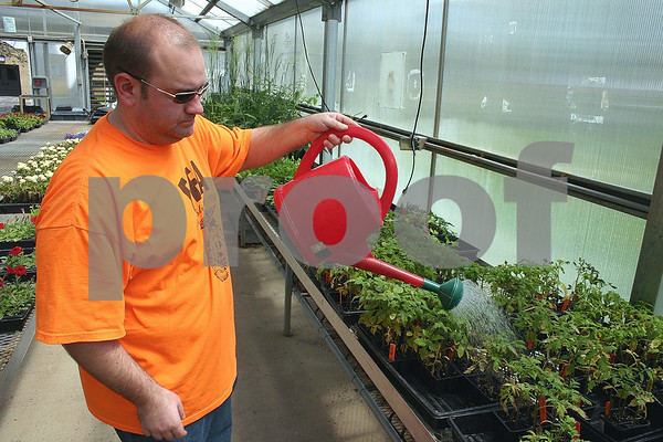ANDREW MITCHELL — amitchell@daily-chronicle.com<br /> Jared Poynter, Hiawatha High School Agriculture and Horticulture teacher, waters some of the plants grown by his students, now on sale at the school's annual Greenhouse Sale.