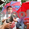 Rob Winner – rwinner@daily-chronicle.com<br /> <br /> (From left to right) Bill Cleveland, of Kingston, holds a goose as brothers Ryan Swider, 5, and Andy Swider, 4, both of Genoa, feel the birds' feathers during the Summer Farm Fest in downtown Genoa on Saturday morning.