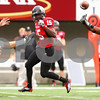 Kyle Bursaw – kbursaw@shawmedia.com<br /> <br /> Northern Illinois safety Courtney Stephen (14) deflects the punt from Cal Poly's Paul Hundley during the first quarter of the game<br /> at Huskie Stadium in DeKalb, Ill. on Saturday, Sept. 24, 2011.