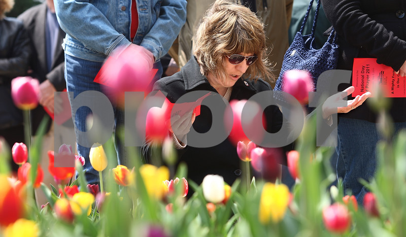 Kyle Bursaw – kbursaw@daily-chronicle.com<br /> <br /> Julie Atkinson kneels in prayer in front of the DeKalb County Courthouse during the National Day of Prayer event in Sycamore, Ill. on Thursday, May 5, 2011.