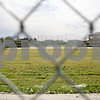 Rob Winner – rwinner@shawmedia.com<br /> <br /> A view from behind the center field fence looking toward home plate at the new DeKalb softball field as seen on Thursday, March 29. Since the beginning of the season the Barbs have had to play their games at Huntley Middle School.<br /> <br /> ***Feel free to throw text over the photo***