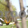 Kyle Bursaw – kbursaw@shawmedia.com<br /> <br /> Kris Knutson (in the Bobcat) waits for his brother Chad Knutson (not pictured) to help guide his placement of a tree with the bobcat. The two own Knutson Lawncare and Home Services and are transplanting nearly 50 of the city's trees to the area around the soccer fields at Huntley Middle School in DeKalb, Ill. on Wednesday, April 4, 2012.