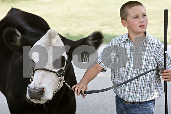 Rob Winner – rwinner@shawmedia.com<br /> <br /> Tate Johnson, 10 of Shabbona, waits with his Chianina Heifer before judging of the Purebred Summer Yearling Heifer class during the DeKalb County 4-H Fair at the Sandwich Fairgrounds Saturday.