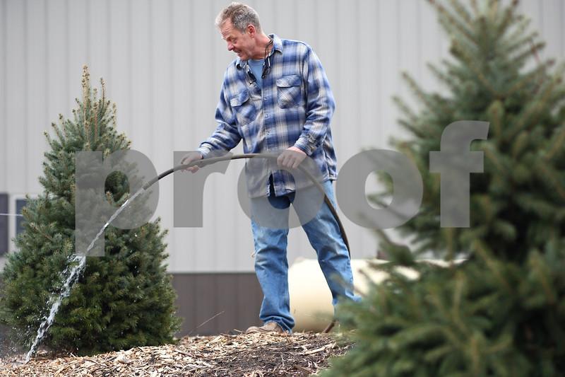 Kyle Bursaw – kbursaw@shawmedia.com<br /> <br /> Blumen Gardens co-owner Joel Barczak waters evergreens at a private home in Sycamore, Ill. on Monday, Dec. 17, 2012.