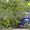 Kyle Bursaw – kbursaw@shawmedia.com<br /> <br /> Savannah Brey's car received damage from a downed tree across the 200 block of North Cross Street in Sycamore, Ill. on Tuesday, July 24, 2012.