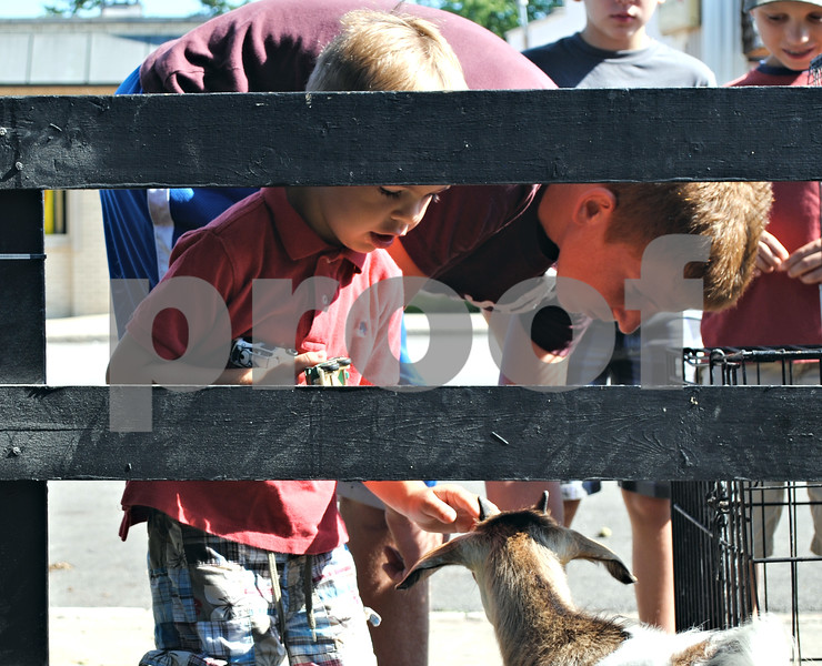 Henry Manning, 4, of Chicago, pets a goat at the second annual Farm Fest in Genoa Saturday.<br /> <br /> By Nicole Weskerna - nweskerna@shawmedia.com