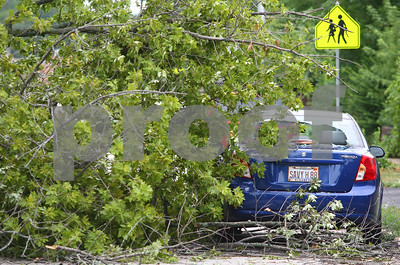 Kyle Bursaw – kbursaw@shawmedia.com  Savannah Brey's car received damage from a downed tree across the 200 block of North Cross Street in Sycamore, Ill. on Tuesday, July 24, 2012.