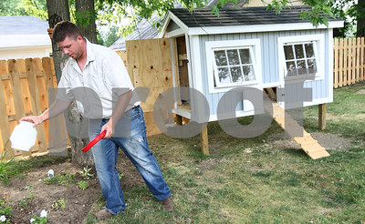Kyle Bursaw – kbursaw@shawmedia.com  Brandon Wiegartz dumps the water bin for his seven chickens in the backyard of his Kirkland home on Thursday, June 28, 2012 before refilling it and setting it outside the chicken coup he built.