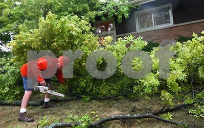 Kyle Bursaw – kbursaw@shawmedia.com  John Owens of Sycamore's Streets Division breaks down a fallen tree at 406 East High Street on Friday, June 29, 2012.