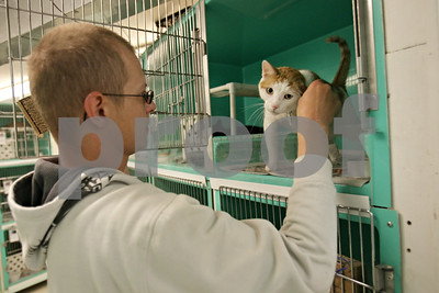 Rob Winner – rwinner@shawmedia.com  Jonathan Johnson spends some time with his cat, Lego, during a visit at the DeKalb County Animal Shelter in Genoa Friday afternoon. The family was displaced after a fire in downtown Sycamore on May 24.