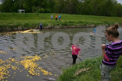 Jeff Engelhardt – jengelhardt@shawmedia.com Kevyn Marshall watches Alpha Phi Omega members push hundreds of rubber ducks down the Kishwaukee River during the 12th annual Duck Race.