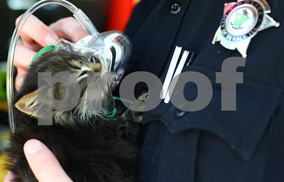 Kyle Bursaw – kbursaw@shawmedia.com  DeKalb Police Officer Jeff Winters helps a cat rescued from 247 Tilton Park Drive snuggle up to an oxygen mask after being retrieved from the basement where the fire originated on Wednesday, May 9, 2012.
