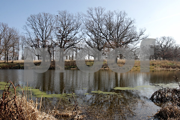 Rob Winner – rwinner@shawmedia.com<br /> <br /> Oak trees near a small pond are seen at the Prairie Oaks Forest Preserve in Kingston, Ill., Saturday, Nov. 17, 2012.