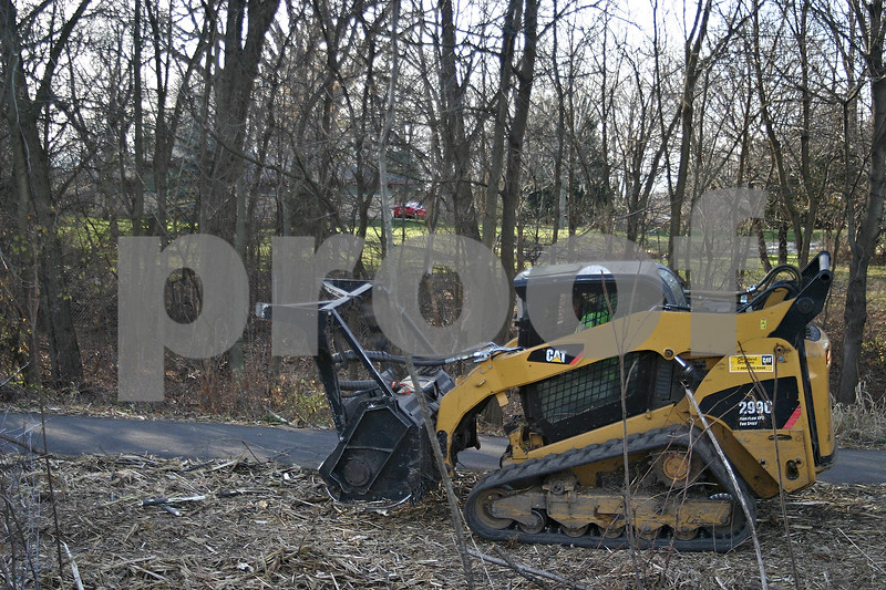Workers cleared trees along a prairie path near Sycamore Road as a part of ComEd's efforts to prevent vegetation from interfering with power lines.