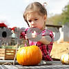 Rob Winner – rwinner@shawmedia.com<br /> <br /> Emma Scruggs, 3, of Montgomery, uses a brush and water to clean off her two pumpkins she selected at Kuipers Family Farm in Maple Park Friday, Sept. 28, 2012.