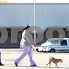 Kyle Bursaw – kbursaw@shawmedia.com<br /> <br /> A young girl and a woman walking her dog travel north on South Fourth Street passing by the area next to Dollar General where Sullivan's Foods used to be on Monday, Oct. 15, 2012.