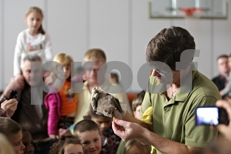 Rob Winner – rwinner@shawmedia.com<br /> <br /> Dan Peterson feeds his Egyptian Fruit Bat during his Incredible Bats presentation at Haish Gym in DeKalb Saturday afternoon.<br /> <br /> Saturday, Oct. 20, 2012
