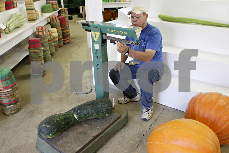 Rob Winner – rwinner@shawmedia.com<br /> <br /> Plano resident Charles Ecklund uses a scale to weigh a squash within the Horticulture/Agriculture building at the Sandwich Fairgrounds on Monday afternoon.