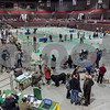 Erik Anderson - For the Daily Chronicle <br /> Dog handlers and the public tour the upper and lower levels of the NIU Convocation Center during the Kennel Club of Yorkville - Dog Show in DeKalb on Saturday, April 6, 2013. The Dog Show is open Saturday and Sunday to all dog breeds and free for public admission from 7:00 a.m. to 6:00 p.m.