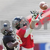 Erik Anderson - For the Daily Chronicle <br /> Northern Illinois University tight end Tim Semisch reaches for the ball near the end zone during the Northern Illinois University Huskie Bowl at Huskie Stadium on Brigham Field on Saturday, April 20, 2013. The cardinal team defeated the black team.