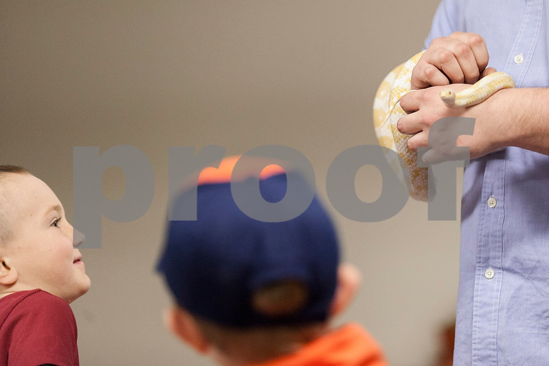 """Erik Anderson - For the Daily Chronicle <br /> Elio RIzzi, 6, of Kaneville (left) and Zachery Behm, 7, of Kanville (right) wait to pet """"Corny"""" the corn snake held by Guest Services member Philip Krepel during the themed Earth Day event for Den #12, Elburn Pack #107's visit to The Midwest Museum of Natural History in Sycamore on Sunday, April 21, 2013."""