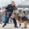 Erik Anderson - For the Daily Chronicle <br /> DeKalb County Sheriff's Deputy Grant Erickson holds a pistol with blanks as his partner, Triton, a German Shepherd clamps onto his arm during a demonstration of the K-9 unit at the National Night Out held at the Target parking lot in DeKalb on Tuesday, August 6, 2013.