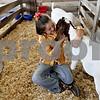 Monica Maschak - mmaschak@shawmedia.com<br /> Della Harrod, 9, of Hinckley, hugs her boer goat, Fudge, in his pen at the 4-H Fair in Sandwich on Saturday, August 3, 2013. Fudge won a blue ribbon and a plaque.
