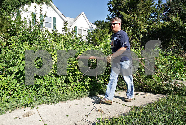 Monica Maschak - mmaschak@shawmedia.com<br /> Lieutenant Jim McDougall, with the DeKalb Police Department, drags a tree branch from a property on the corner of 7th Street and Fisk Avenue in DeKalb on Saturday, August 10, 2013. About 20 volunteers from a neighborhood watch group and from the city of DeKalb helped to clear foliage for four hours.