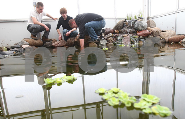 Kyle Bursaw – kbursaw@shawmedia.com<br /> <br /> DeKalb students Nolan Valdivia (from left), Danny Lamansky and teacher Ryan Bounds work in the DeKalb High school greenhouse's ornamental pond during class on Friday, Feb. 22, 2013. The pond was created over the winter break with work being put in by Valdivia, Lamansky and other students with the help of Bounds.