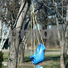 Kyle Bursaw – kbursaw@shawmedia.com<br /> <br /> A pair of children's swings hang from a tree outside a home at Evergreen Village in Sycamore, Ill. on Wednesday, Jan. 9, 2013.