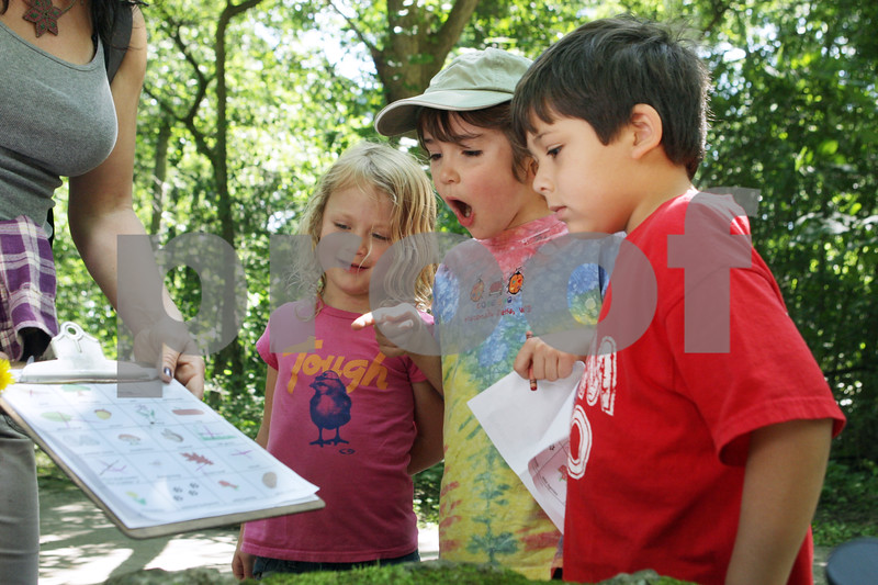 Rob Winner – rwinner@shawmedia.com<br /> <br /> (From left to right) Homeschool children including Saige Ruback, 5, Michael Jaros, 6, and Javier Pfeifer, 5, react to a harvestman, or daddy-longlegs, during a nature walk at Potawatomie Woods Forest Preserve in Kirkland, Ill., Monday, July 1, 2013.