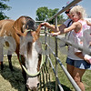 Monica Maschak - mmaschak@shawmedia.com<br /> Kelly Bergeron and her daughter, Grace Bergeron, 1, from Aurora, reach into a gate to pet a horse at the Waterman Lions Club 13th Annual Summer Fest at Waterman Lions Park on Saturday, July 20, 2013.