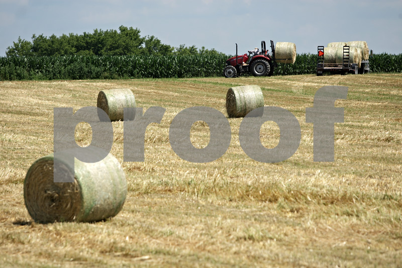 Rob Winner – rwinner@shawmedia.com<br /> <br /> A worker on John Henner's farm located off of Barber Greene Road in Sycamore, Ill., loads rolled oat hay on to a trailer on Monday, July 15, 2013.